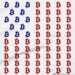 Bitcoin Flag - Red, White & Blue T-Shirt